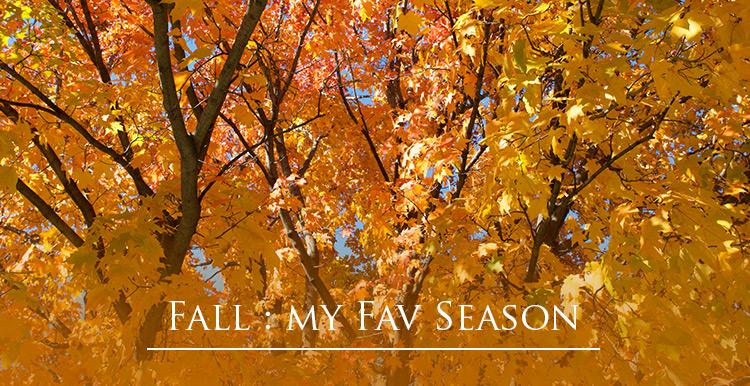 fall-st-paul-2014-title